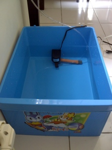 Pompa air mini di dalam box air