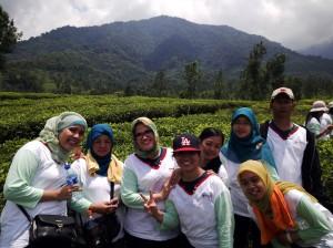 Tim 1 dengan latar belakang keindahan alam perkebunan teh